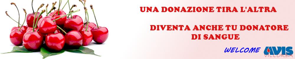 www.avisvillorba.it
